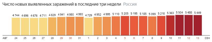 Число новых зараженных коронавирусом  по дням в России на 13 сентября 2020 года