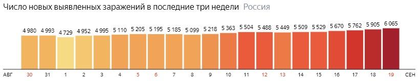 Число новых зараженных коронавирусом  по дням в России на 19 сентября 2020 года