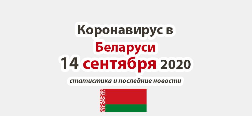 Коронавирус в Беларуси на 14 сентября 2020 года