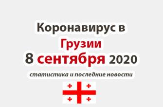 Коронавирус в Грузии на 8 сентября 2020 года