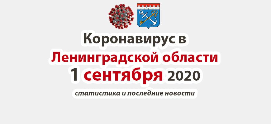 Коронавирус в Ленинградской области 1 сентября 2020