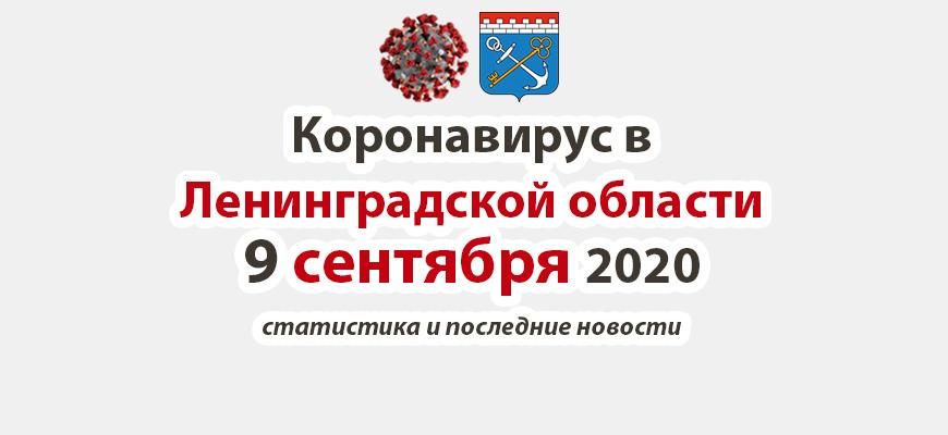 Коронавирус в Ленинградской области 9 сентября 2020