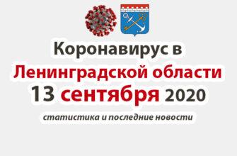 Коронавирус в Ленинградской области 13 сентября 2020