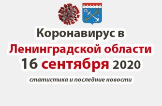 Коронавирус в Ленинградской области 16 сентября 2020
