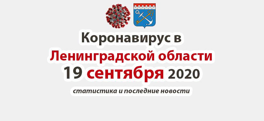 Коронавирус в Ленинградской области 19 сентября 2020