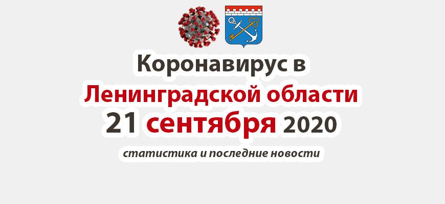 Коронавирус в Ленинградской области 21 сентября 2020