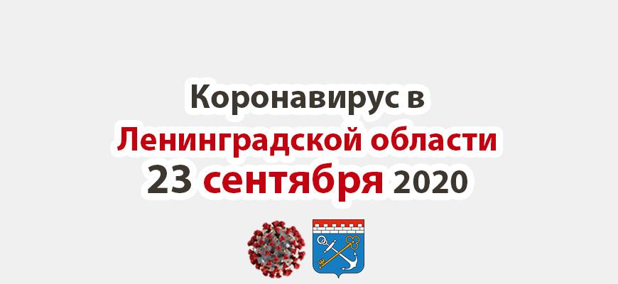Коронавирус в Ленинградской области 23 сентября 2020