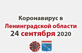 Коронавирус в Ленинградской области 24 сентября 2020