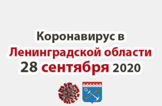 Коронавирус в Ленинградской области 28 сентября 2020