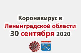 Коронавирус в Ленинградской области 30 сентября 2020