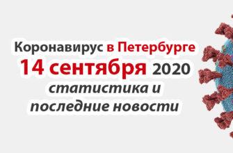 Коронавирус в Санкт-Петербурге на 14 сентября 2020 года