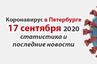 Коронавирус в Санкт-Петербурге на 17 сентября 2020 года
