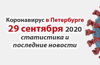 Коронавирус в Санкт-Петербурге на 29 сентября 2020 года