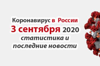 Коронавирус в России на 3 сентября 2020 года