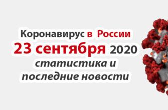 Коронавирус в России на 23 сентября 2020 года