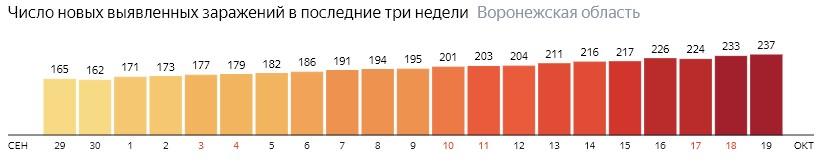 Число новых зараженных КОВИД-19 по дням в Воронежской области на 19 октября 2020 года