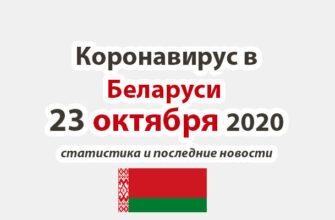 Коронавирус в Беларуси на 23 октября 2020 года