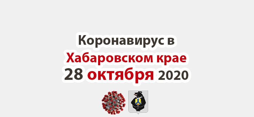 Коронавирус в Хабаровском крае 28 октября 2020