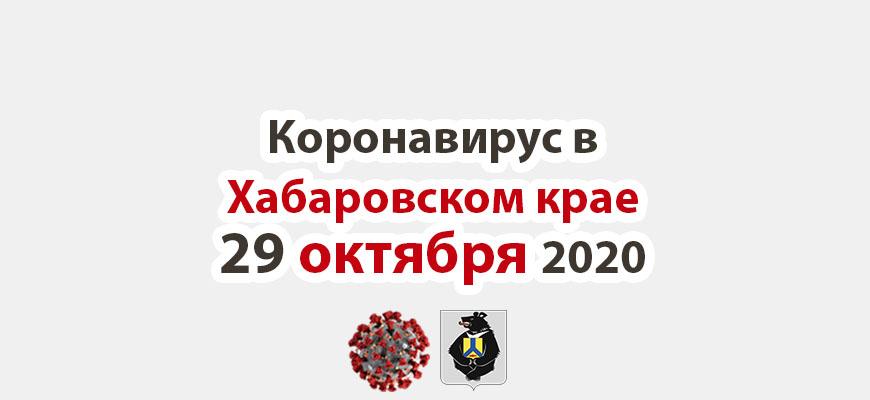 Коронавирус в Хабаровском крае 29 октября 2020