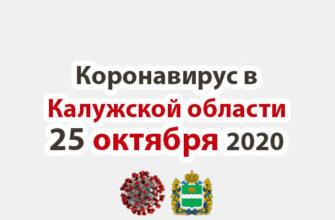 Коронавирус в Калужской области на 25 октября 2020 года
