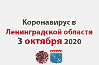 Коронавирус в Ленинградской области 3 октября 2020