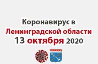 Коронавирус в Ленинградской области 13 октября 2020
