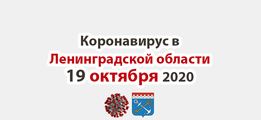 Коронавирус в Ленинградской области 19 октября 2020