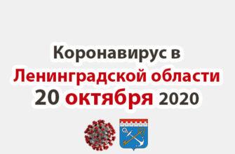 Коронавирус в Ленинградской области 20 октября 2020