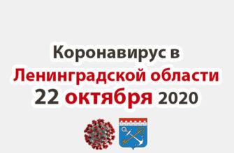 Коронавирус в Ленинградской области 22 октября 2020