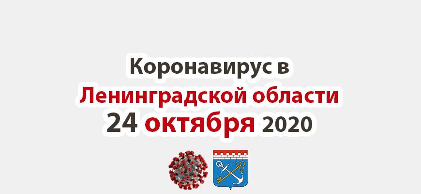 Коронавирус в Ленинградской области 24 октября 2020