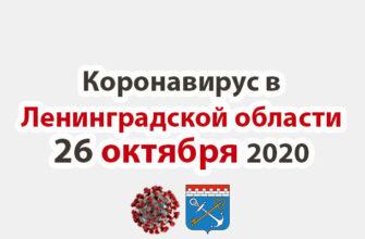 Коронавирус в Ленинградской области 26 октября 2020