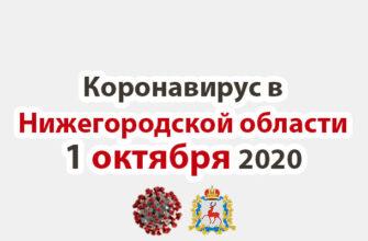 Коронавирус в Нижегородской области на 1 октября 2020 года
