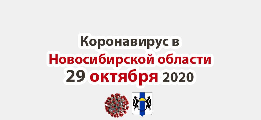 Коронавирус в Новосибирской области 29 октября 2020