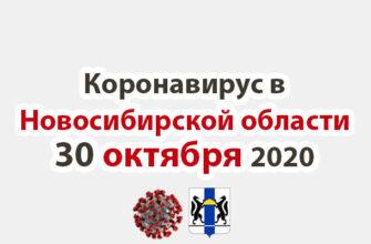 Коронавирус в Новосибирской области 30 октября 2020