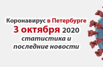 Коронавирус в Санкт-Петербурге на 3 октября 2020 года