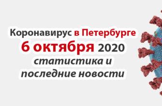 Коронавирус в Санкт-Петербурге на 6 октября 2020 года
