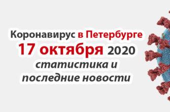 Коронавирус в Санкт-Петербурге на 17 октября 2020 года