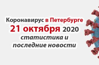 Коронавирус в Санкт-Петербурге на 21 октября 2020 года