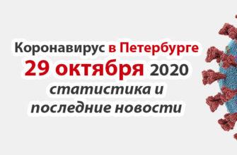 Коронавирус в Санкт-Петербурге на 29 октября 2020 года
