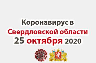Коронавирус в Свердловской области на 25 октября 2020 года