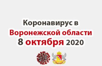 Коронавирус в Воронежской области на 8 октября 2020 года