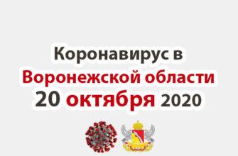 Коронавирус в Воронежской области на 20 октября 2020 года