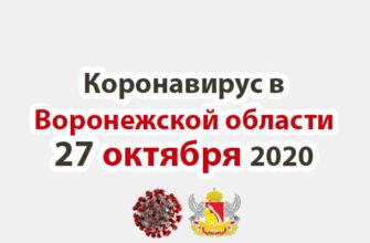 Коронавирус в Воронежской области на 27 октября 2020 года