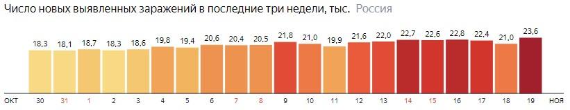 Число новых зараженных коронавирусом  по дням в России на 19 ноября 2020 года