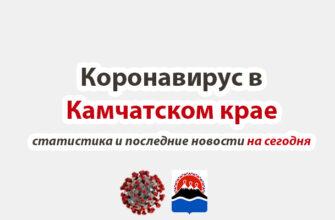 Коронавирус в Камчатском крае на сегодня