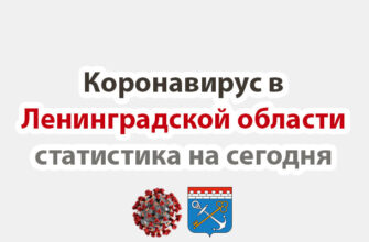 Коронавирус в Ленинградской области статистика на сегодня