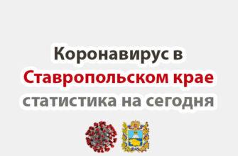 Коронавирус в Ставропольском крае статистика на сегодня
