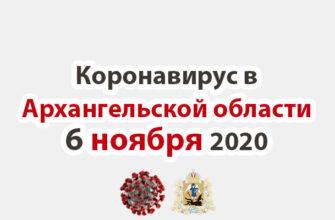 Коронавирус в Архангельской области 6 ноября 2020
