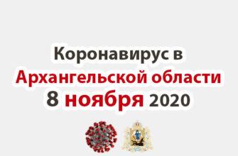 Коронавирус в Архангельской области 8 ноября 2020