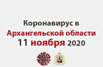 Коронавирус в Архангельской области 11 ноября 2020